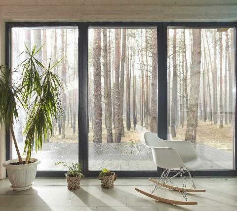 日当たりの良い部屋