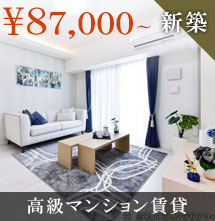 ロイジェント新栄Ⅱ87,000円~