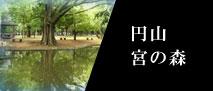 円山宮の森