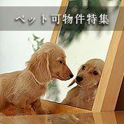 名古屋のペット可物件特集